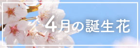 4月の誕生花