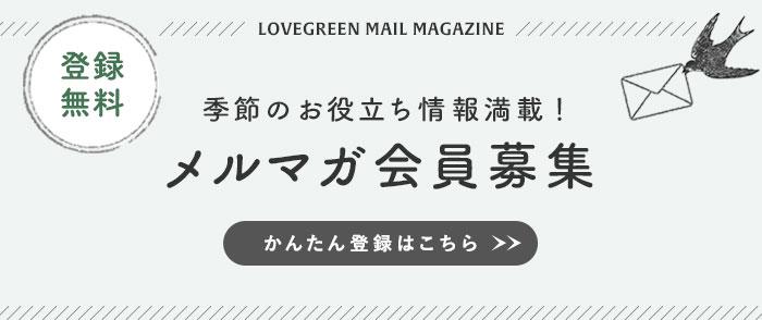 LOVEGREEN(ラブグリーン)メールマガジン会員募集中!