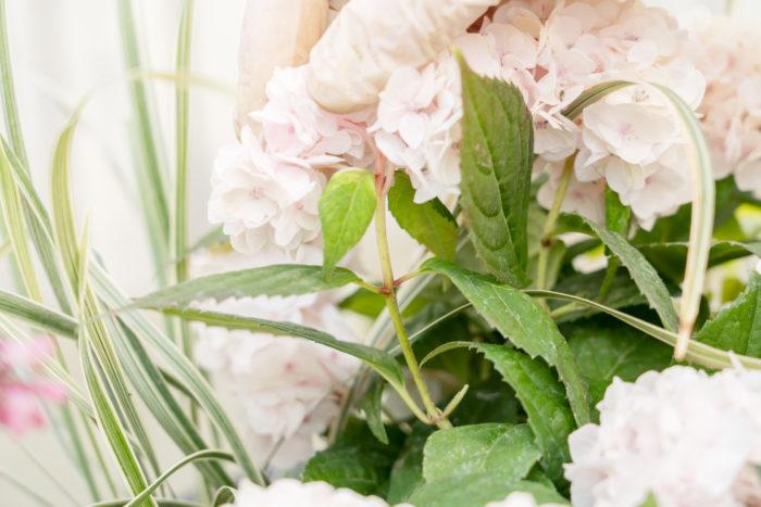 花が終わったら、新芽を伸ばすために、葉の上でカットします。花に一番近い節もしくは二番目に近い節の部分で切ります。
