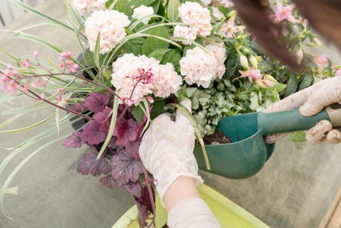 6. まわり一周と、苗と苗の隙間にもしっかり土を入れます。割りばしなどの棒で土をつっつき、鉢全体に土が行き渡るよう整えます。