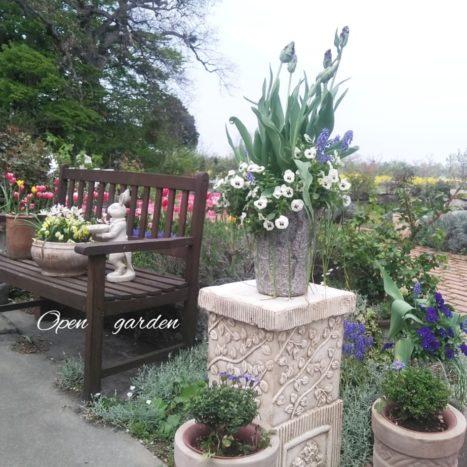 ご夫婦で営むオープンガーデン。素敵なお花がたくさん!