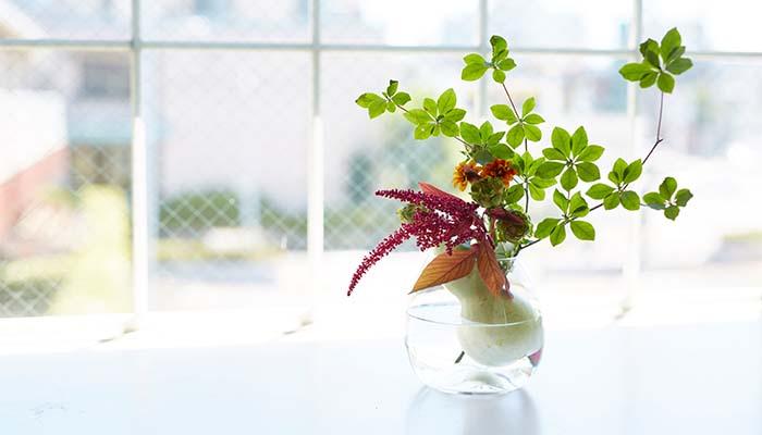 夏はシンプルに枝物を生けて、お部屋をグリーンで彩るのもおすすめです。枝物は持ちを良くするため、足もとをカッターやナイフ、ハサミなどで削ります。そのあと十字に割りを入れ、給水面を増やしましょう。人気の枝物といえば、ドウダンツツジ。すてきな空間を演出してくれるドウダンツツジはインテリアとも相性抜群です。