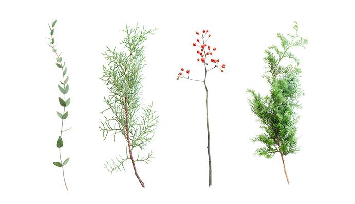 今回は4種の花材を使用しました。  左から  ユーカリ コニファーブルーアイス 野バラの実 ヒムロスギ