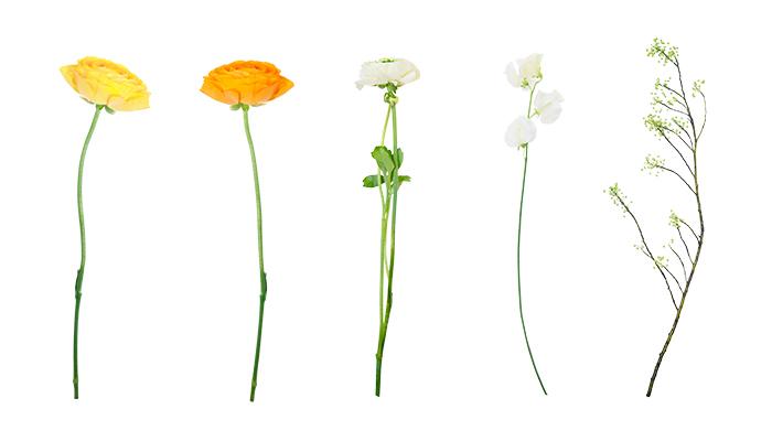 今回は3種の花材を使用しました。  左から  ラナンキュラス(黄色・オレンジ・白) スイートピー アオモジ