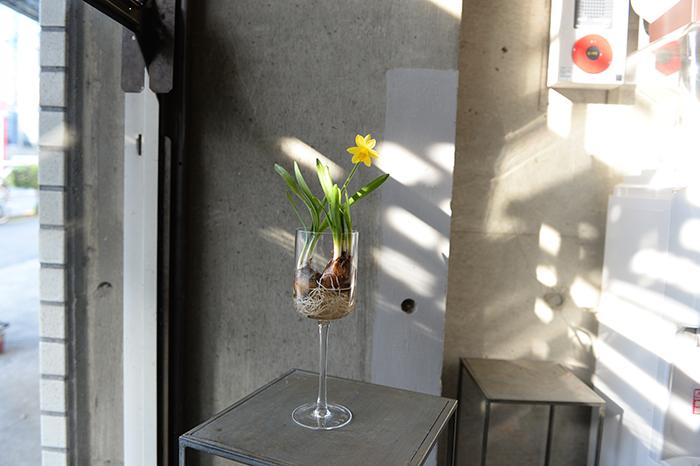 透明なコップやグラスに生けて、根が浸かる程度に水を入れます。根は優しくほぐすのがポイント。  2つのアレンジパターンで新生活を飾ってみてはいかがでしょうか。