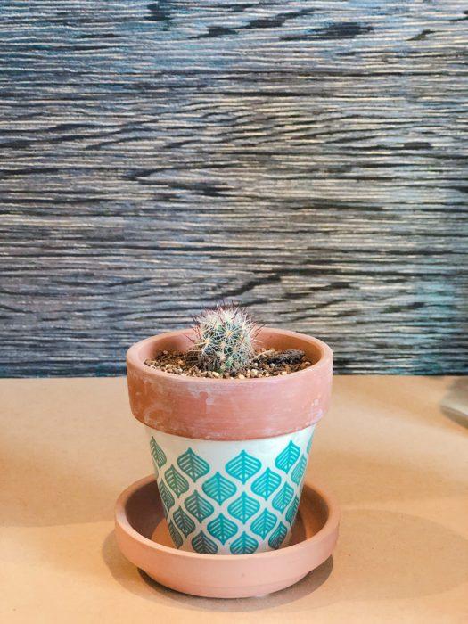 爽やかな葉っぱの模様が目を引く鉢、植物も気持ちよさそう。