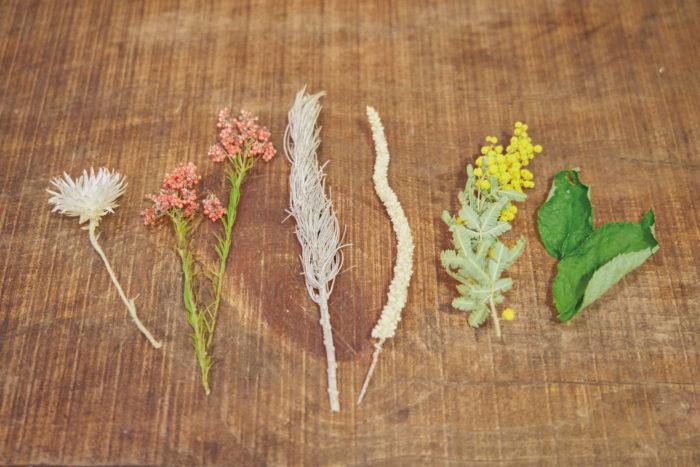 エバーラスティングフラワー、ライスフラワー、アスパラサス、スウォロウィー、ミモザ、バラの葉