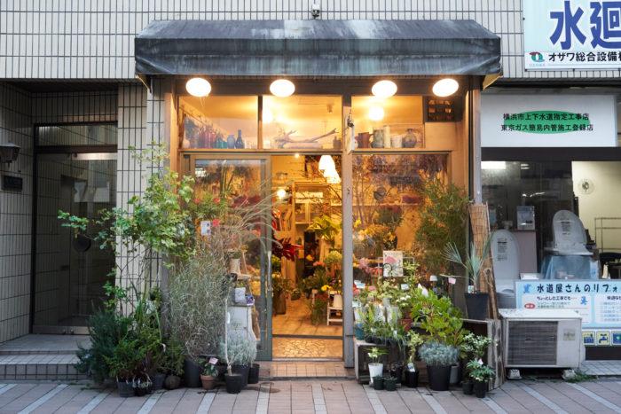 The Bulb Book 店舗情報