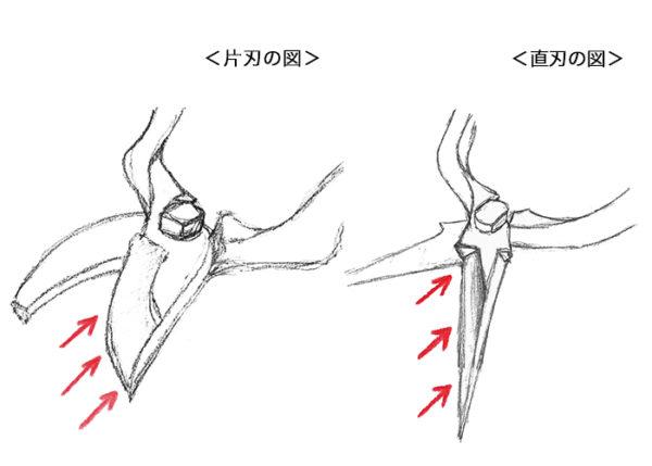 鋏が固定された状態で砥石を切刃部の角度に合わせて矢印の方向へ均等に削ります。
