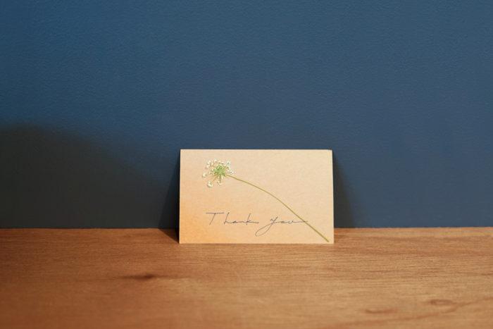 「押し花」で使用した花材・道具 花材:ホワイトレースフラワー 道具:ティッシュペーパー、重石、紙、ボンド
