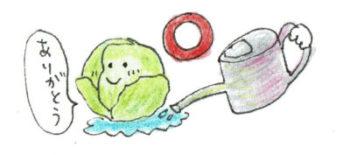 また水やりの際、葉から水分を吸収できるトマトやメロンは葉に水がかかってもOKですが、レタスやピーマンなどは葉に水がかかるのを嫌います。水やりは株元にするのか、葉にかけるのか野菜ごとの判断も必要です。 「水やり3年(10年)」という言葉があるくらい奥の深い水やりの極意は、植物と対話しながら与えるということなのです。