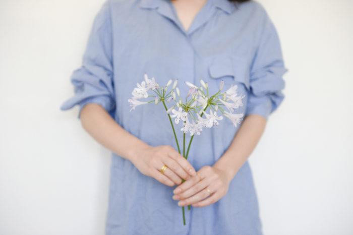 アガパンサス 英名:African lily 科名:ヒガンバナ科 属名:アガパンサス属 原産地:南アフリカ