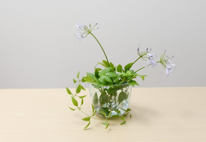 4、 アガパンサスを利休草や交差する他の茎に引っかかるように生ける。支点を一緒にすると自然な流れに。