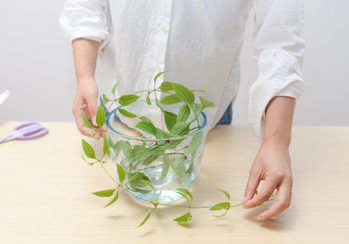 2、 茎を丸めて絡ませ、花止めとして葉を取った茎を作り底に沈める。