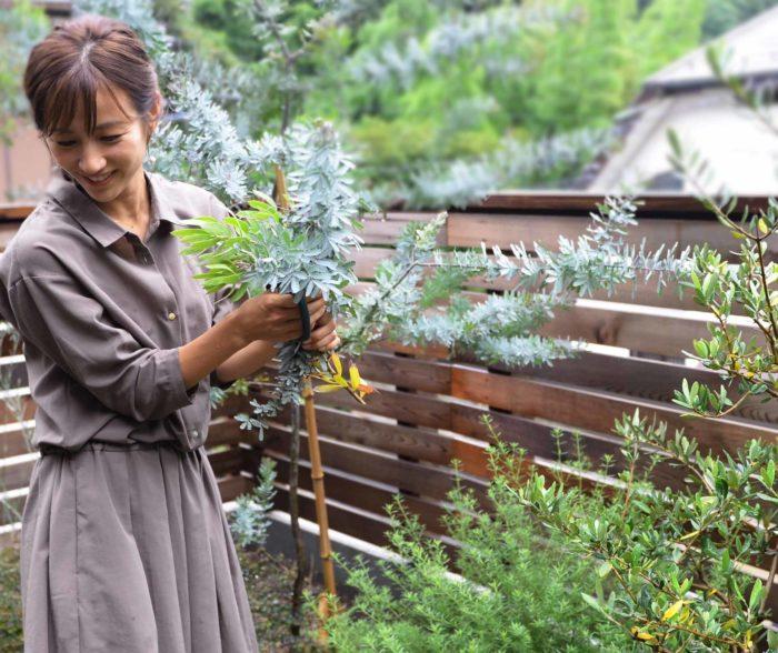 この日の撮影で何か足りないな、と考えて「庭のミモザ使ってもいいですか?」と剪定に行った前田さん。お庭には他にもグレビレアリーフやハーブなどお気に入りの植物が植えられていました。好きな植物を集めた庭は、憧れです。