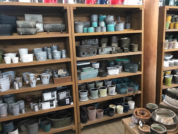 店内には多肉植物、サボテンをはじめティランジア、鉢などの雑貨も豊富に取り揃えてあります。こだわりの土も購入できます。