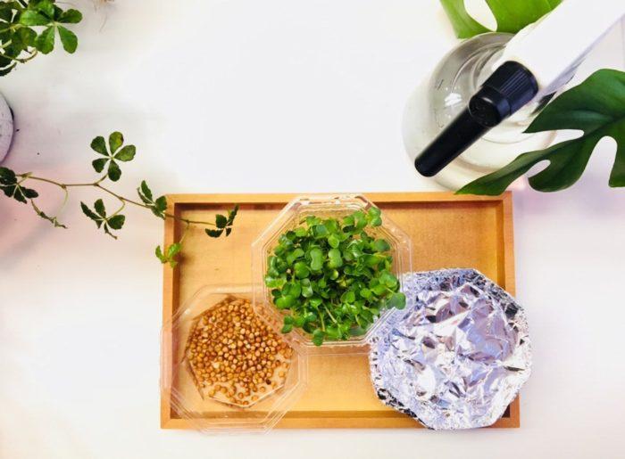 では、スプラウト栽培を始めましょう!  今回はカイワレ大根タイプの育て方をご紹介します。  皆さんのご自宅にある材料で構いませんのでご用意下さい♪