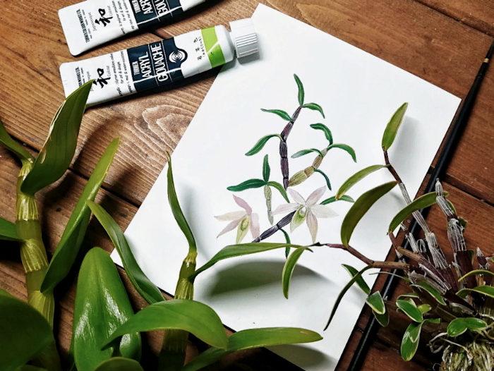 花や葉、茎など蘭の細部までを絵の具で再現