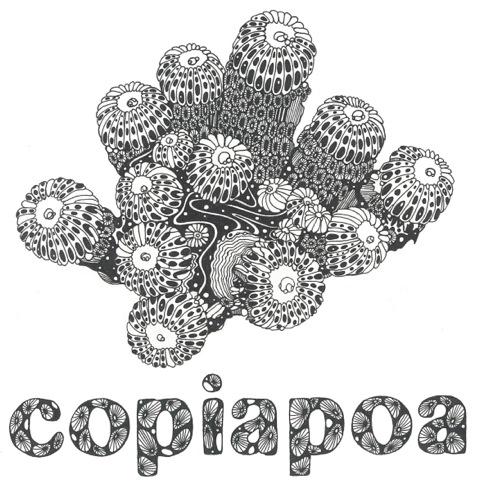 copiapoa_ロゴ