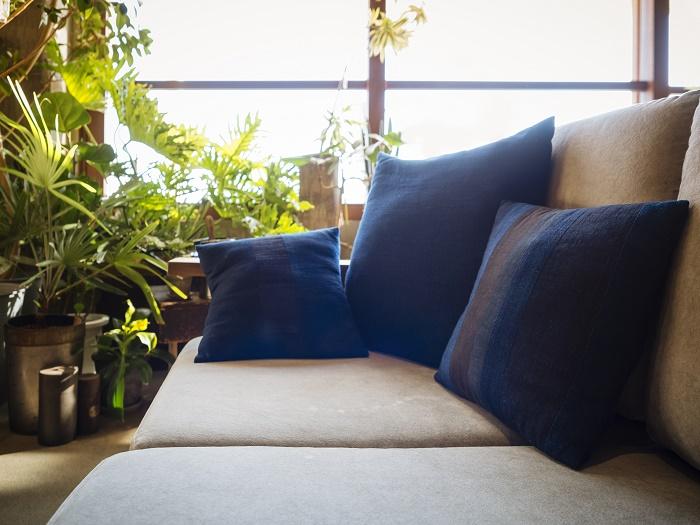 楽しい植物のある暮らし 休日は、お部屋で植物に囲まれてリラックス。好きな音楽を聴いて、あたたかいモーニングコーヒーを入れて心地よい時間が過ごすのもすてきな時間。  植物の大きさや樹形、種類によって、お部屋の雰囲気も変えることも。最近は吊るして飾ったり、壁にかけたりとアレンジも様々。植物の飾り方をこだわるのも楽しみのひとつです。