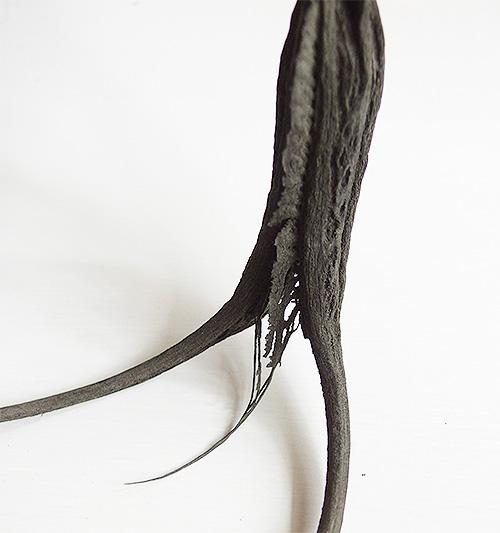 マットブラックのボディに鋭い爪。逆さにすれば角のようにも見えて「悪魔の角」とも言われることも。
