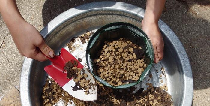 土を鉢に入れます。ゼラニウムは浅く植えるほうがよいです。深くならないように先にある程度土を入れておきます。