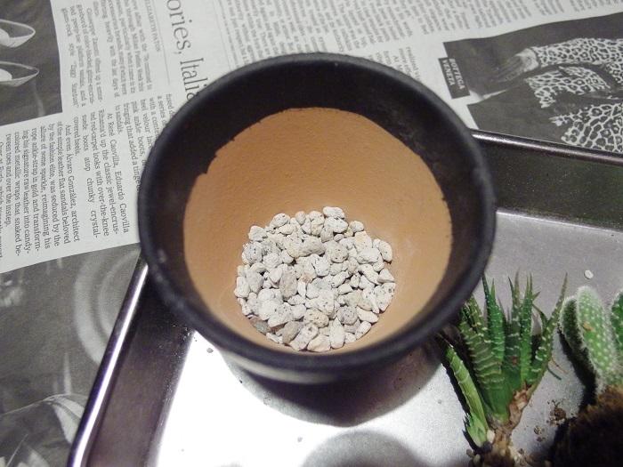 ①鉢に鉢底ネットをいれて、軽石をいれます。