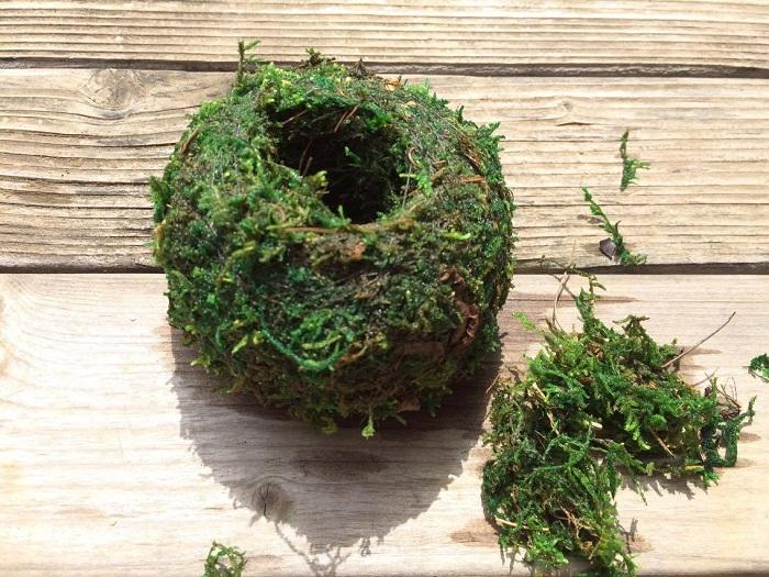 苔玉の中からひとつまみほどの苔を取り出しましょう。