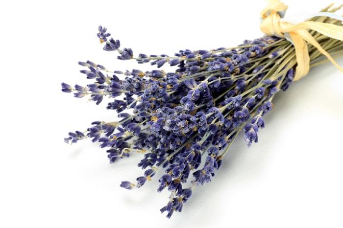 フレッシュの花を束ねて花束に。そのまま風通しの良い場所に吊り下げておくと簡単にドライフラワーができます。