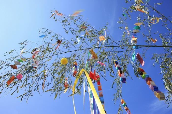 七夕よりずっと以前から笹(竹)は神聖なものとして、古くから大切なものとして扱われて来たといわれています。丈夫で、繁殖力も強い植物です。生命力と神秘性を兼ね備えた笹は昔から神事などに使われてきたようです。