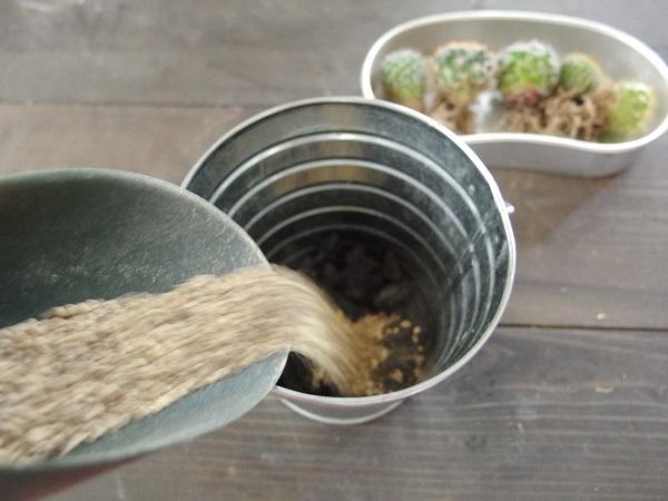 次に鉢の1/3くらい土を入れます。このバケツは深めのため、やや多めに入れました。
