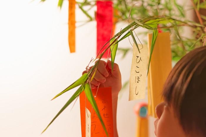 やがて時代は、江戸時代に変わり、一般の人たちも楽しむ行事になりました。神木と言われる梶の葉は大事にされていたので、五色の紙に願いを書くようになります。短冊の願い事を書く初めの頃は、江戸時代に寺子屋で学んでいた子たちが、字がうまくなりますように、裁縫がうまくなりますようにと書いていたそうです。