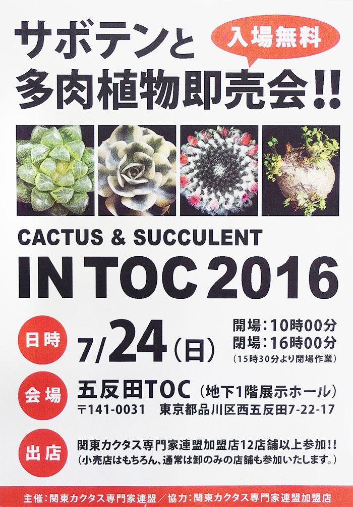 7/24(日)関東カクタス専門家連盟主催の即売会が初開催
