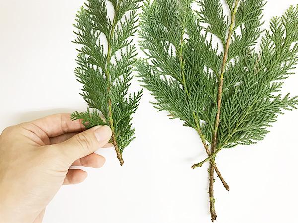 ①材料の下葉は取ります  まとめるために下葉は10cmくらいは取ります。細かいものは先に別に束ねて紐で括っておくと作りやすいです。