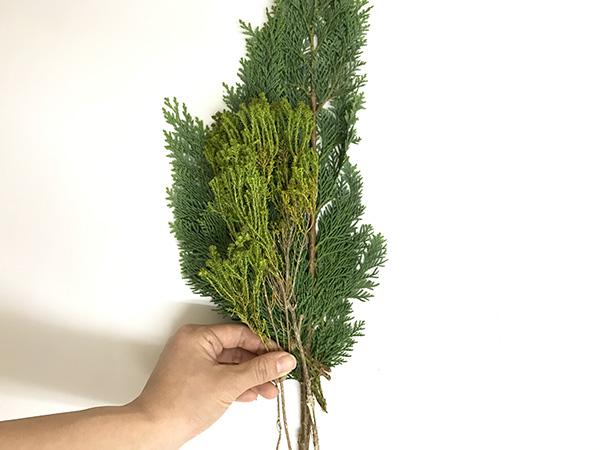 ②植物をランダムに重ねるように合わせる  背の高いものは一番下にして背丈の短いものを前に重ねます。