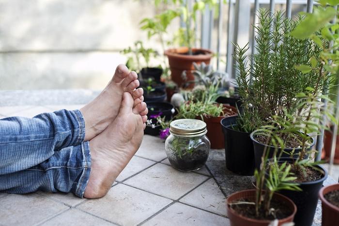 いくらベランダが広くても、風通しが悪いと植物たちは元気に育ってくれません。  特に真夏の蒸し暑い時期に風通しが悪い場所に置いてしまうと株元が蒸れてしまったり、根腐れを起こしてしまうことがあります。  風が常に吹いている必要はないので、空気が流れるようなベランダかどうかを確認してください。  もし空気の流れが無いようなベランダであれば、扇風機やサーキュレーターの導入を検討してみてください。  逆に、風通しが良すぎるベランダがある、という方は、乾燥と強風対策が必要になってきます。  風通しが良いということはその分乾燥してしまうので、水やりの回数やタイミングを調整する必要があります。基本的に日が沈む夕方頃~夜にかけて水やりをすると、乾燥しにくくなりますよ。  また、風通しが良いというのは風を遮る障害物がないということになります。  普通の陽気であれば心配することはないのですが、台風などのときには注意が必要です。  台風の猛烈な風がそのままベランダへ入り込んでくることになるので、鉢や植物棚が飛ばされないようにしっかりと固定しなければなりません。  急な突風が吹いて鉢が倒れないか心配!という方はシステムトレーなどを導入してみてください。
