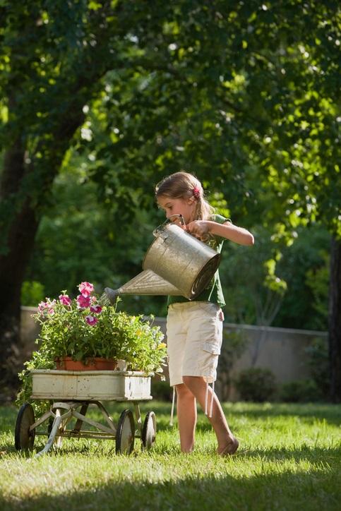 掘った穴に苗を入れたら、土にしっかりと活着させるためにスコップや手で苗の周りの空気を抜くように土を押し込みます。最後に軽く茎を持ち上げて、簡単に苗が抜けてしまわないかチェックします。しっかり苗が植わったら、花に水がかからないように根の部分にしっかりと水をあげてください。