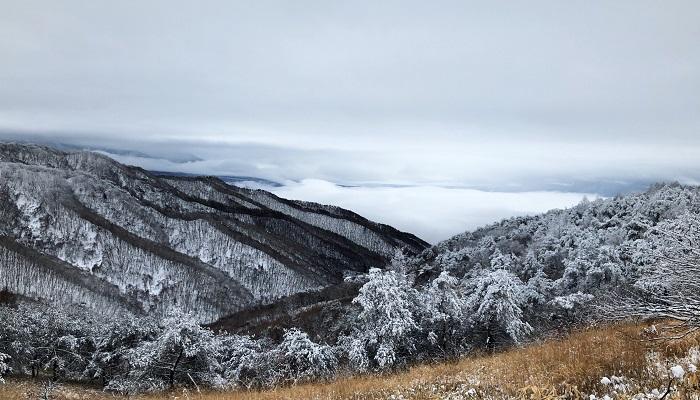 立冬・小雪・大雪・冬至・小寒・大寒