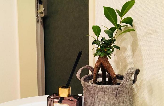 出かけるとき、帰宅時に、フワッといい香りがするだけで気分が良くなりませんか?  素適な香りは、いい運気を呼び込んでくれそうです。  自分好みの香りや、良い香りの花を飾って、玄関に素敵な香りを充満させてみてはいかがでしょうか?
