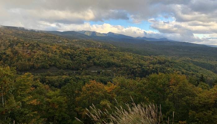 秋になり紅葉が進んだ山は大変鮮やかで、山道で落ち葉や木のみを拾ったり、キノコ狩りなどの楽しみもたくさんある。  鳥獣のごとくたのしや秋の山 山口青邨  木の実をついばむ小鳥や紅葉の中で跳ねる獣のように、鮮やかな秋の山を楽しむ。なんとなく鳥獣戯画で情景が再生されますね。