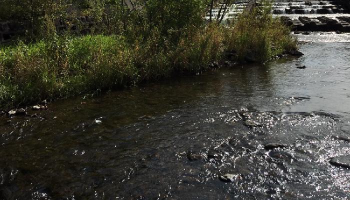 河川、下水に流さない ・余った散布剤は、河川、下水等に流さないようにしましょう。