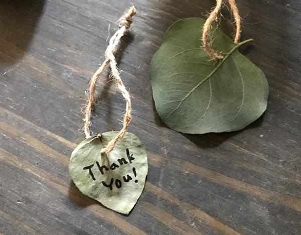 ポポラスは葉が大きめでハート型のものもあったりします。ギフトのメッセージを書いたり、何かのタグにしても。  ▼ユーカリ・ポポラスについてはこちら