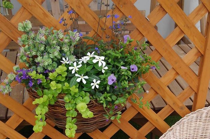 壁などにかけるタイプは、吊るすタイプと同じくヤシマットを使うもの、プラスチックなどで出来ていて土を入れて植物を植えるだけのもの、スリットが入っているもの、かごのようになっているようなものなどたくさんの種類があります。半円形のため植えられる植物は比較的少なくなります。