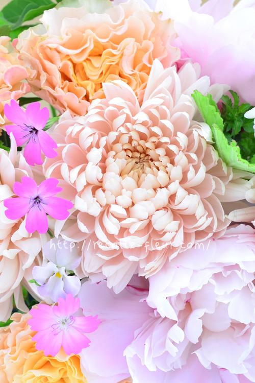 マム・シルキーガールとバラ、春の草花のパステル系のアレンジ