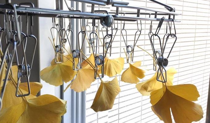 洗ったらしっかり乾燥させます。  量が多い場合は風で飛んでいかないように洗濯ネット等に入れたりするのもおすすめです。