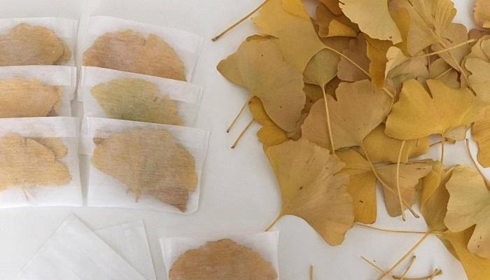 しっかり乾燥させたイチョウの葉を絹や綿、ガーゼ等の袋に入れていけばもう出来上がりです!