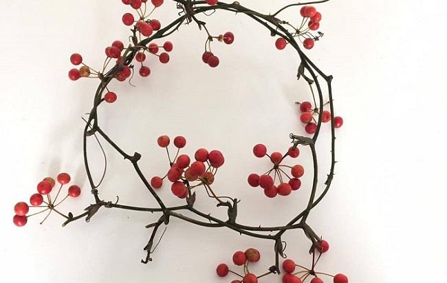 1本目の円に絡めながら丸めていきます。枝分かれした部分やトゲ、実の部分にひっかけながら作っていきます。