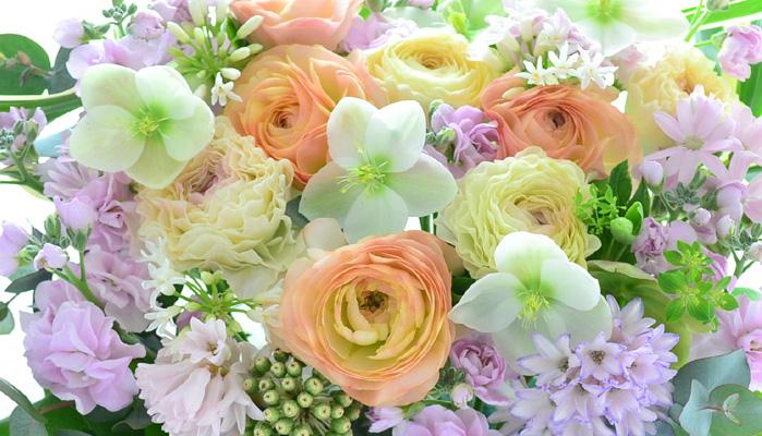 「春の花」の画像検索結果