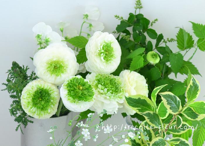 さわやか!白×グリーン。