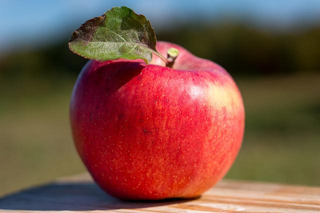 もっと知りたいリンゴの秘密   LOVEGREEN(ラブグリーン)